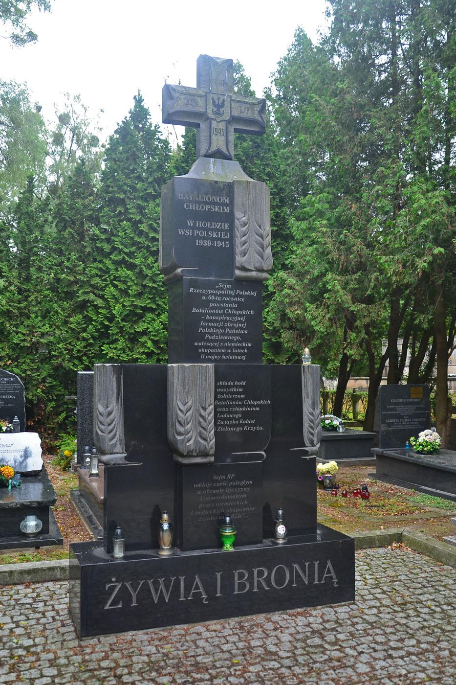 Cmentarz Wojskowy na Powązkach, ul. Powązkowska, Warszawa - zdjęcia